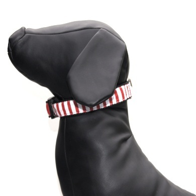 """Captain Pooch"" Nautical Stripe Dog Leash (Red)"
