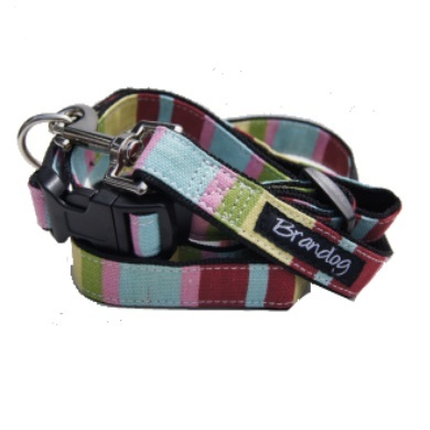 """Captain Pooch"" Fantasy Dog Collar (Rainbow)"