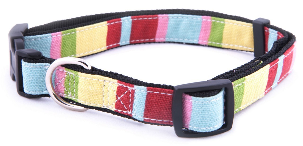 """Captain Pooch"" Fantasy Dog Leash (Rainbow)"