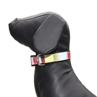 """Captain Pooch"" Fantasy Dog Collar + Leash Set (Rainbow)"