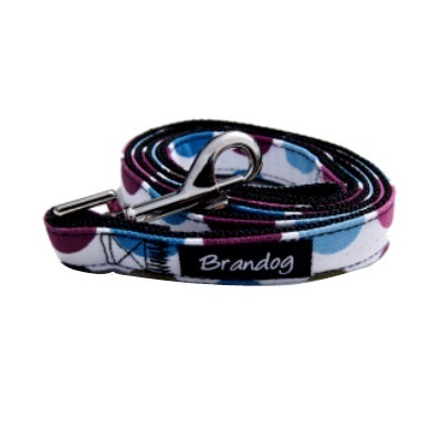 """Retro Pooch"" Circles Dog Harness + Leash Set (Rainbow)"
