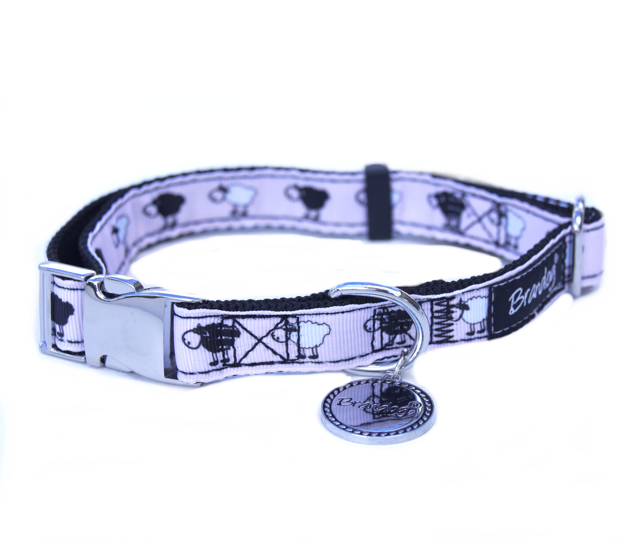Brandog ''Black Sheep'' Collar