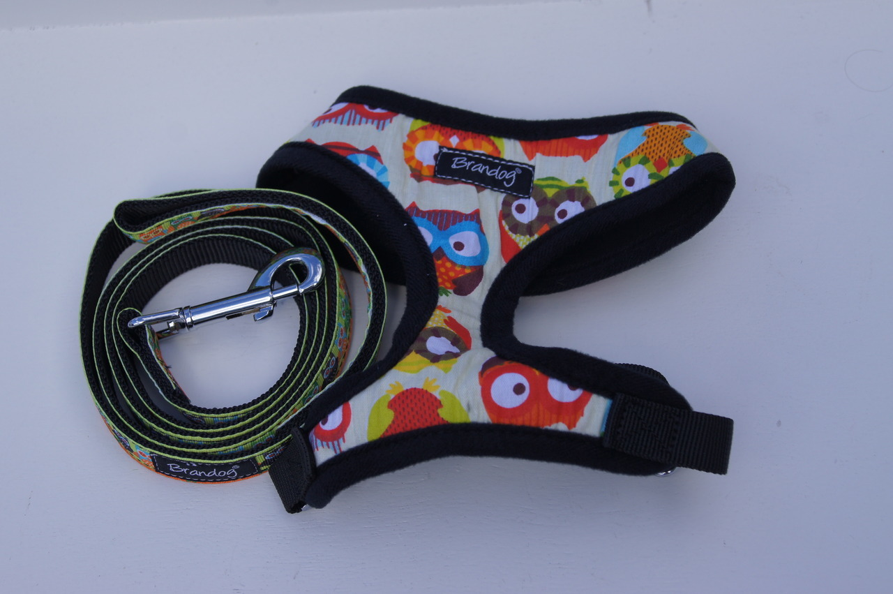 Brandog ''Owl'' Dog Harness + Leash Set