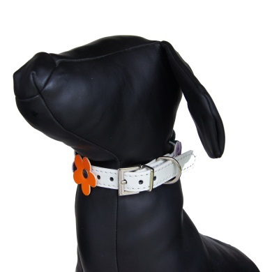 """Sprout"" PU Leather Dog Collar (White)"