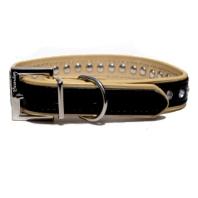 """Winsome"" PU Leather Dog Collar (Black + Gold)"