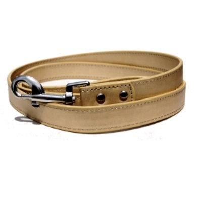 """Winsome"" PU Leather Dog Collar + Leash Set (Black + Gold)"