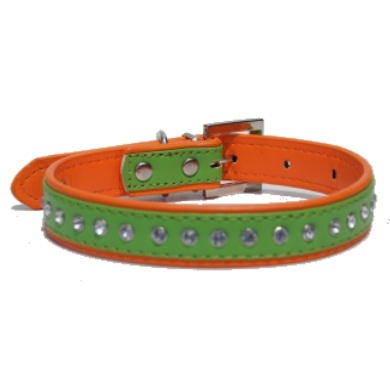 """Winsome"" PU Leather Dog Collar (Green + Orange)"