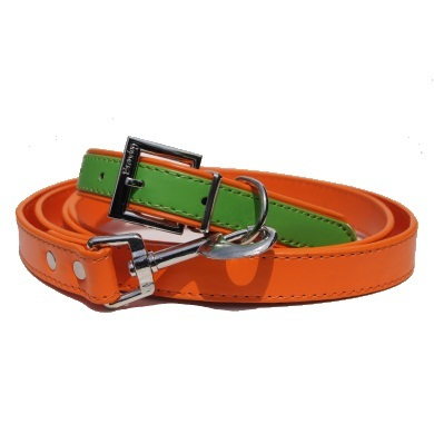 """Winsome"" PU Leather Dog Collar + Leash Set (Green + Orange)"