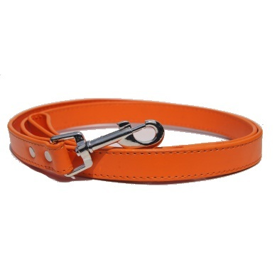 """Winsome"" PU Leather Dog Leash (Orange)"