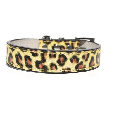 """Exotica"" PU Leather Dog Collar (Gold)"
