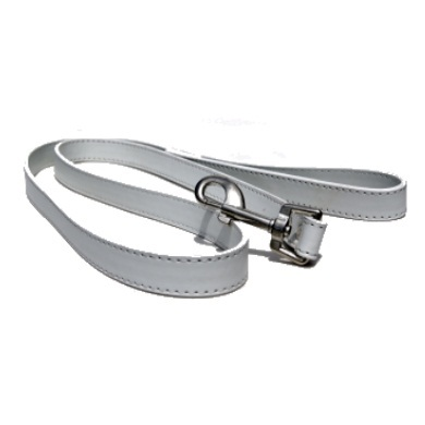 """Studly"" PU Leather Dog Collar & Leash Set (White)"