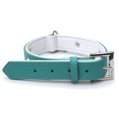 """Brando"" Double Leather Dog Leash (Teal)"