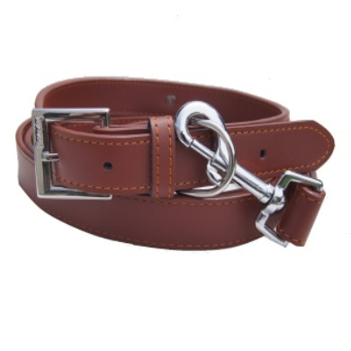 """Zebo"" Leather Dog Collar + Leash Set (Brown)"