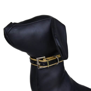 """""""Winsome"""" PU Leather Dog Collar (Black + Gold)"""